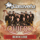 Quiero/Banda Guasaveña de Valentín Elizalde, Valentín Elizalde