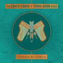 チャイニーズ・バタフライ/Chick Corea, Steve Gadd