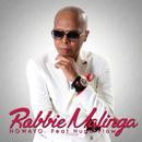 Nowayo (feat. Hugo Flow)/Robbie Malinga