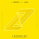 A Different Way (Bro Safari & ETC!ETC! Remix) (feat. Lauv)/DJ Snake