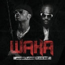 Waka (feat. Rick Ross)/Diamond Platnumz