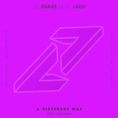 A Different Way (Henry Fong Remix) (feat. Lauv)/DJ Snake
