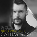 You Are The Reason (Tiësto's AFTR:HRS Remix)/Calum Scott