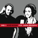 Věčně nevěrná (feat. Sabina Krovakova)/Xindl X
