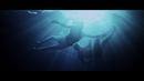 Dreamer/Axwell Λ Ingrosso