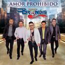 Amor Prohibido (En Vivo)/Grupo Bryndis