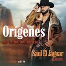 Orígenes - Mis Éxitos Con Norteño (Edición De Lujo)/Saul El Jaguar Alarcón
