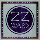 Bag of Bones (Fan Version)/ZZ Ward