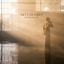 Stand By Me/Skylar Grey