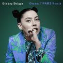 Dream (RAMI Remix)/Bishop Briggs