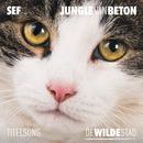 """Jungle Van Beton (Titelsong """"De Wilde Stad"""")/Sef"""