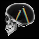 Dreamer (Sylvain Armand Remix)/Axwell Λ Ingrosso