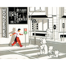 Wonder - The Best Of Panda/Panda Hsiung