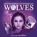 Wolves (Said The Sky Remix)/Selena Gomez, Marshmello