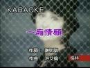 Yi Xiang Qing Yuan (Karaoke)/Diana Yang