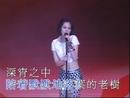Pan Ni Han Zi ('95 Live)/Shirley Kwan