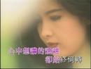 Xin Ruan (Music Video)/Vivian Chow