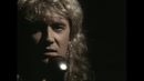 Have You Ever Needed Someone So Bad?/Def Leppard