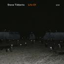 Bloodwork/Steve Tibbetts