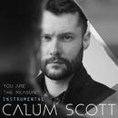 You Are The Reason (Instrumental)/Calum Scott
