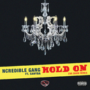 Hold On (Eva Shaw Remix) (feat. Sahyba)/Ncredible Gang
