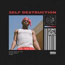 Self Destruction/Boogie