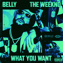 What You Want (feat. The Weeknd)/Belly
