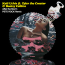 After The Storm (Pete Rock Remix) (feat. Tyler, The Creator, Bootsy Collins)/Kali Uchis