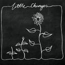 Little Changes (Acoustic)/Frank Turner