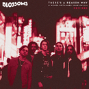 There's A Reason Why (I Never Returned Your Calls) (Remixes)/Blossoms