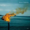 A Man About A Horse/Steve Tibbetts