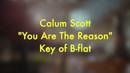 You Are The Reason (Karaoke Version)/Calum Scott