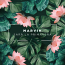 Sarà La Primavera/Marvin