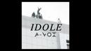 Idole/A-Vox