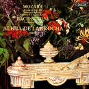 Mozart: Piano Sonata No. 11; Rondo in D Major; Fantasia in C Minor / Bach-Busoni: Chaconne/Alicia de Larrocha