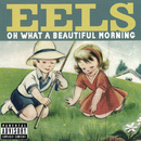 Oh What A Beautiful Morning/Eels