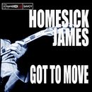 Got to Move/Homesick James