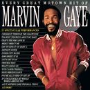 Every Great Motown Hit Of Marvin Gaye/Marvin Gaye & Kygo