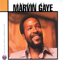 Anthology: The Best Of Marvin Gaye/Marvin Gaye