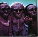 ASYLUM/ASYLUM