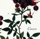 サングローズ/Cocco
