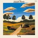 2222年ピクニック/TULIP