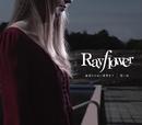 「裏切りは僕の名前を知っている」オープニングテーマ 裏切りのない世界まで/エンディングテーマ 蒼い糸/Rayflower