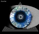 瞳孔(通常盤)/プラスティック トゥリー