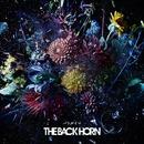 バトルイマ/THE BACK HORN