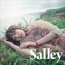 その先の景色を/Salley