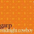 Midnight Cowboy/garp