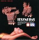 RUMBA/オルケスタ・デル・ソル