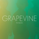 Burning tree/GRAPEVINE