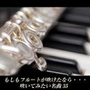 もしもフルートが吹けたなら・・・吹いてみたいフルート名曲35/VARIOUS